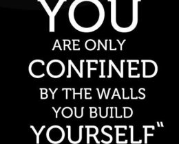 026ec03dca23ad50fbf92fc9fd240c32--comfort-zone-quotes-get-out-of-your-tear-down-this-wall