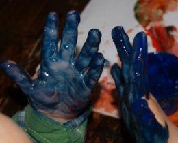blauwvingersgroot700_400x400