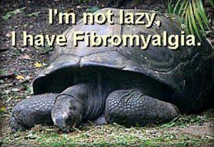 schildpad fibro