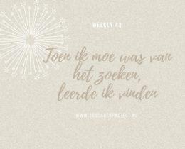 www.365dagenproject.nl (7)