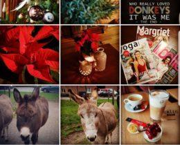 Dag sinterklaas hallo kerst #December feestmaand